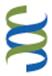 BSMS Global Health Scholarship 2016