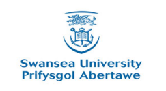 Music Scholarships at Swansea University