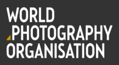 Sony World Photography Professional Competition 2017