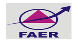 FAER McAfee Scholar Awards Program 2017-18