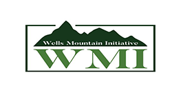 Wells Mountain Initiative Scholar Program 2018