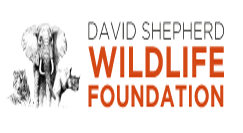 David Shepherd Wildlife Artist Contest 2017