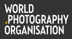 Sony World Photography Professional Competition 2018